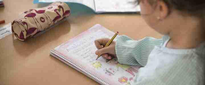 Rúbriques sobre habilitats cognitivolingüístiques consensuades pel professorat d'un institut